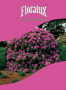 Rhododendron_floralux